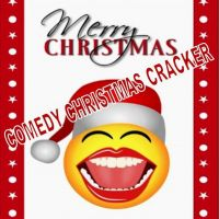 Comedy Christmas Cracker at The Funky Fish Club