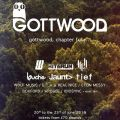 Gottwood Festival 2013