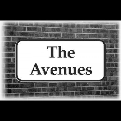 The Avenues, unplugged. | West Bulls Pub Hull  | Sat 4th February 2012 Lineup