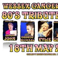 Wessex Cancer Trust 80s Tribute Fest at Stoneham Park